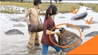 Cewek Cantik Tangkap Ikan Secara Tradisional | Mancing ID