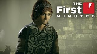 The First 15 Minutes of Shadow of the Colossus on PS4 (Captured in 4K)