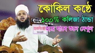 Bangla Waz 2018 Mufti Habibullah Solaimani || কোকিল কন্ঠে ১০০% কলিজা ঠান্ডা হয়ে যাবে শুনে দেখুন