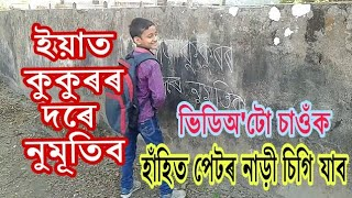 Commedy Video//Dipankar Sarma
