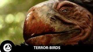 Giant Horse-Eating Birds | 10 Foot Tall Prehistoric Terror Birds Once Roamed the Earth