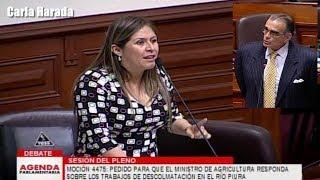 Pleno del Congreso: Vilcatoma, Salgado, Alcorta, Aramayo, Becerril, Glave, Sheput, Lescano, Olaechea