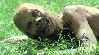 The Walking Dead   Bicycle Girl Scene