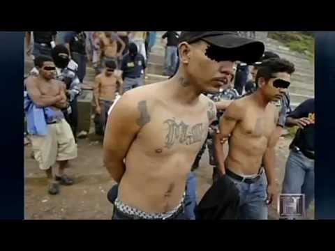MS 13 Root Of All Evil