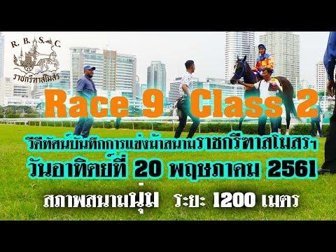 Xxx Mp4 Thailand Horse Racing 2018 May 20 ม้าแข่งเที่ยว 9 ชั้น 2 3gp Sex