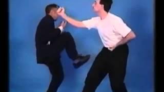 Ip Chun   VERY VERY RARE VIDEO)