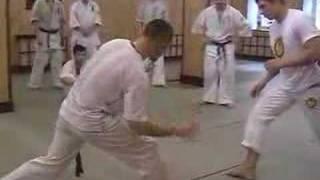 Kyokushin vs Capoiera