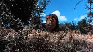 """Tarzan  (1966 TV Series) Full Intro and Opening Title Theme (a.k.a. """"Tarzan"""