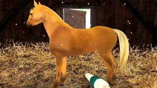 Planet Horse Free video game to download for PC and Mac