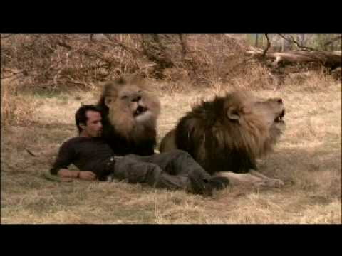 Kevin Richardson White Lion Home is a Journey .m4v