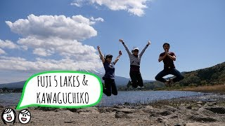 FUJI FIVE LAKES & KAWAGUCHIKO // 富士五湖 & 河口湖 (Japan Travel Vlog)