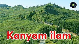 Kanyam Ilam, Nepal कन्याम इलाम, नेपाल