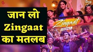 Zingaat का मतलब नहीं पता तो ये video आप के लिए है | Dhadak | Ishaan Khattar | Janhvi Kapoor