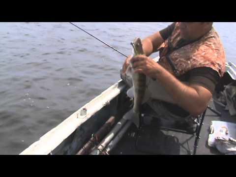 ловля судака весной на джиг на свири видео