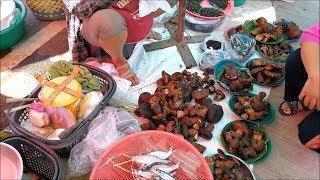 Amazing street food vdo - Asian food in thai market , thai food