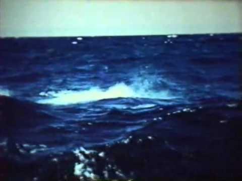 Pesca del merlín mas grande del mundo The Great Marlin Lugar Cabo Blanco Piura Perú 1