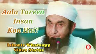 Aala Tareen Insan Kon Hai? ❤️ Maulana Tariq Jameel ❤️ Islamic Whatsapp Status Video