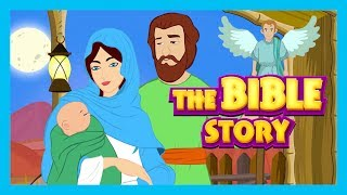 The Bible Story - Stories of Jesus || Bible and Other Story Collection For Kids