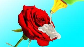 20 FLOWER HACKS AND DIY FLOWER IDEAS