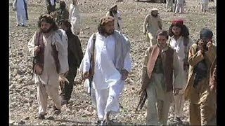 USA announce arrest of Taliban commander