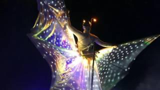 carnevale di venezia 2017  venice carnival 2017;  carnaval de venise 2017 ;