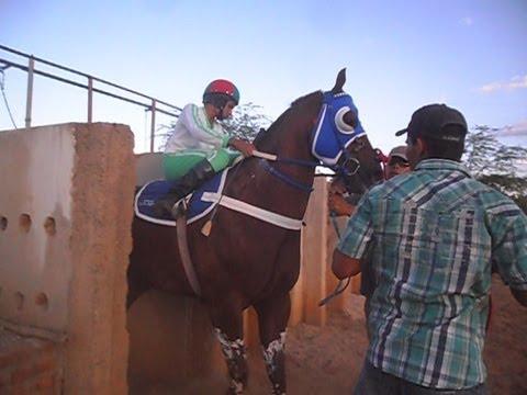 Corrida de Cavalo em Ibititá Cobertura RFNOTICIAS.COM 13 04 2013