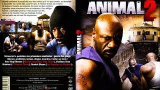 Animal 2  -  2007