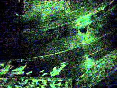 Night vision Shot Video of Daitya Sudan Madir Temple Lonar D.Buldhana.