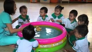 Nhà trẻ 18-24 tháng học quan sát vịt con trường mầm non Hạnh Phúc