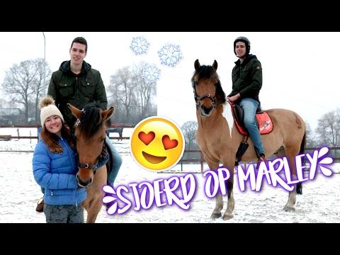 Xxx Mp4 My Boyfriend Tacks Up And Rides My Horse ENGL SUBS Felinehoi 3gp Sex