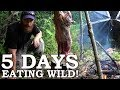 Download Video Download 5 DAYS eating ONLY WILD FOODS! | Survival Challenge | The Wilderness Living Challenge 2017 SEASON 2 3GP MP4 FLV