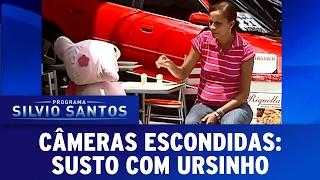 Susto com Ursinho   Câmeras Escondidas (05/02/17)