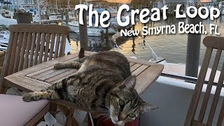 Taking it Slow in New Smyrna Beach, Florida | Great Loop Cruising, Episode 19