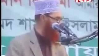 Heavy Weight Speech By Allama Deloar Hossain Saidi