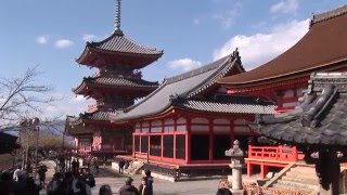 Kiyomizu-dera temple and gardens, Kyoto, Japan travel video