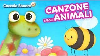 Canzone degli animali - Canzoni per bambini di Coccole Sonore