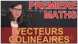 Vecteurs colinéaires - Le rappel de cours - Maths 1ère - Les Bons Profs