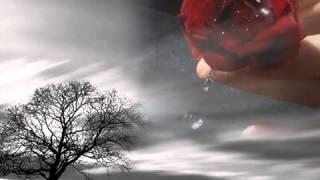 Belal Khan   Shudu Tori Jonno Kade Mon Shuna Pakhi   ( Orginal Cd Sound)