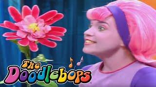 The Doodlebops: The Ewww Flower (Full Episode)