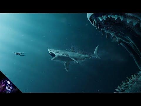 Xxx Mp4 दुनिया की सबसे बड़ी शार्क Largest Shark In The World Megalodon Hindi 3gp Sex