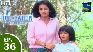Dil Ki Baatein Dil Hi Jaane - दिल की बातें दिल ही जाने - Episode 36 - 20th May 2015