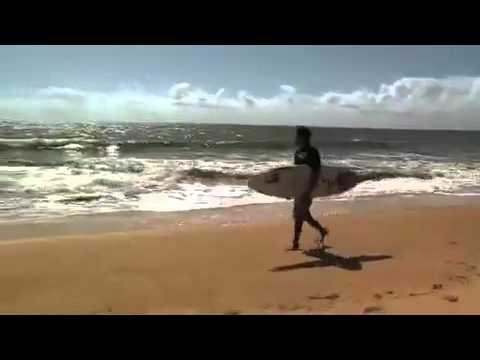 Ataques de tubarão Brasil é o país com maior incidência de casos