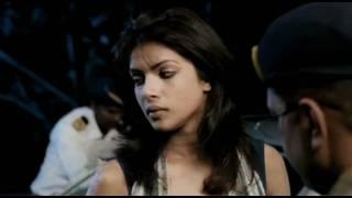 Priyanka Chopra Drink & Drive Case - Fashion