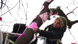 Kadıköylü Kadınlar Sevgi Ağacı Örüyor!