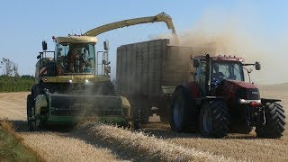 Krone Big X 630 Working Hard in The Field Chopping Straw for Biogas Plant | Danish Agriculture