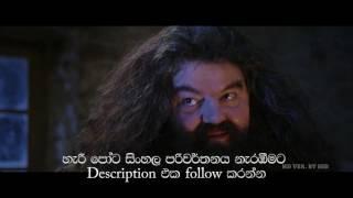 සිංහල දෙබසින් රසවත් කළ හැරී පොට-harry potter sinhala dubbed movie link