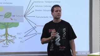 Biologi C - Økologi - Fotosyntese