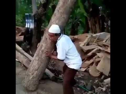 Kakek sugiono angkat kayu bikin ngakak (super grandfather prank )