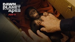 Dawn of the Planet of the Apes | Caesar's Story [HD] | 20th Century FOX