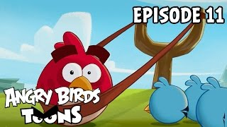 Angry Birds Toons - Slingshot 101 (Ep11 S1)